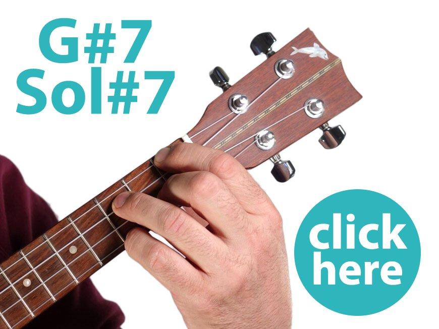 G#7-fotoaccordo
