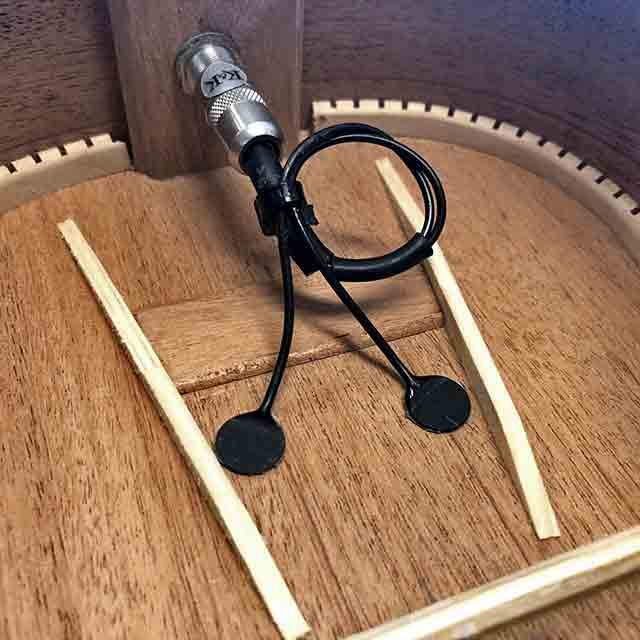 ukulele pickups